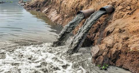 trumps-epa-is-letting-power-plants-dump-toxic-waste-1598977891916-1599566496943.jpg