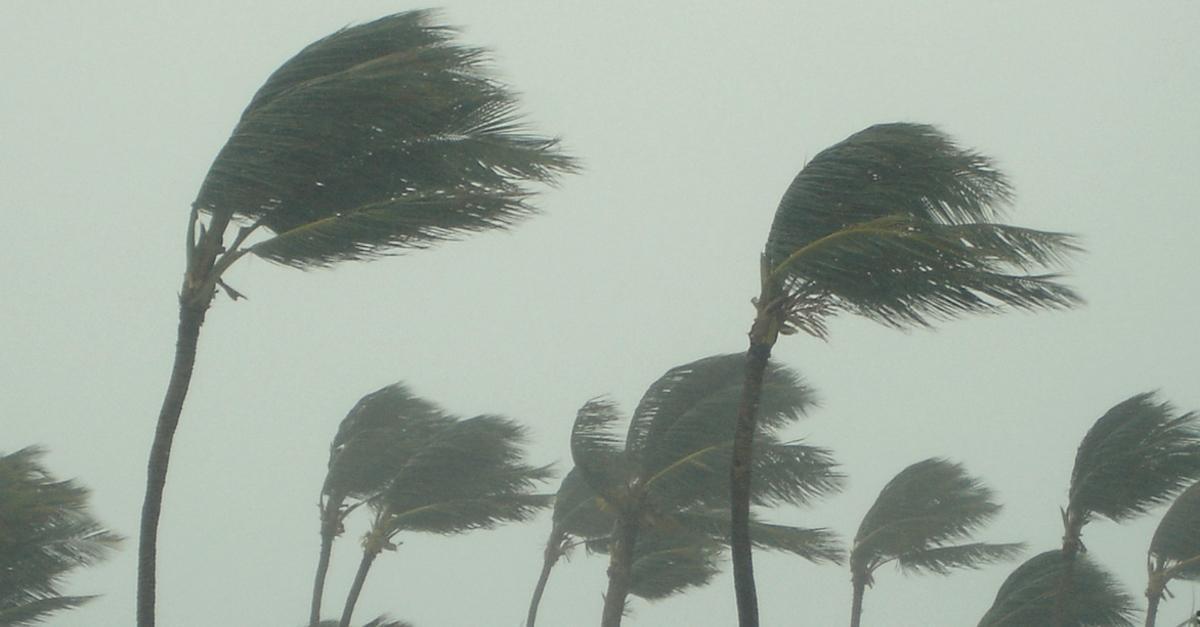 hurricane-1588604897666-1588685495185.jpg