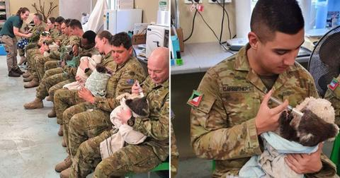Soldiers fighting Australia bushfires are spending their time off cuddling displaced koalas