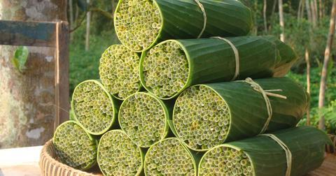 grass-straws-1554478757590-1593701438600.jpg