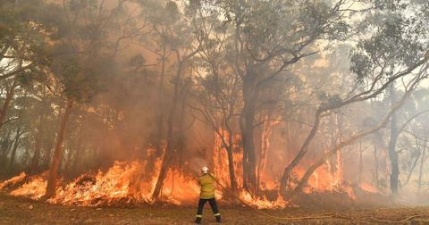 australian-bushfires-everything-you-need-to-know-1577988898510-1577993867877.jpg