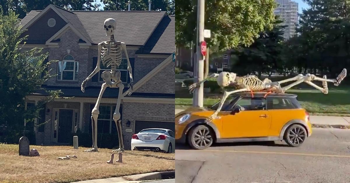 featured giant skeleton