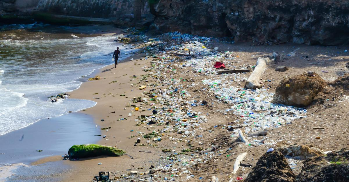 caribbean-banning-single-use-plastic-1577724729705.jpg