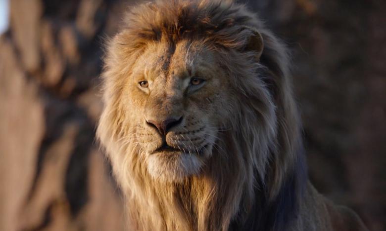 1-lion-king-1580917173357-1580918877612.jpg