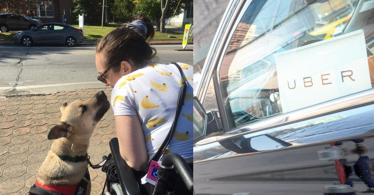 uber-wheelchair-service-dog-1579636727656-1579643001571.jpg