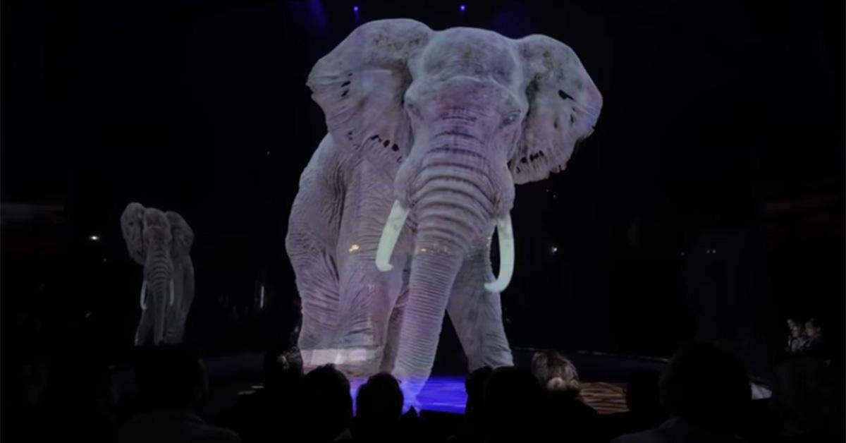 circus-animal-holograms-1559672306139-1591282527675.jpg